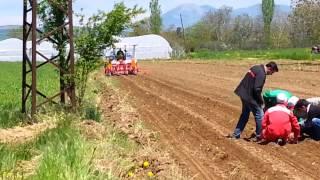 Meşealan tarım Gaspardo diskli gübreli mibzer mısır ekme