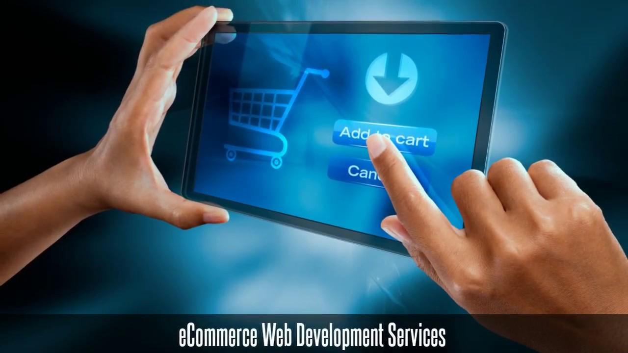 Best Web Development Company in USA, SEO Web Design Services - NuCitrus
