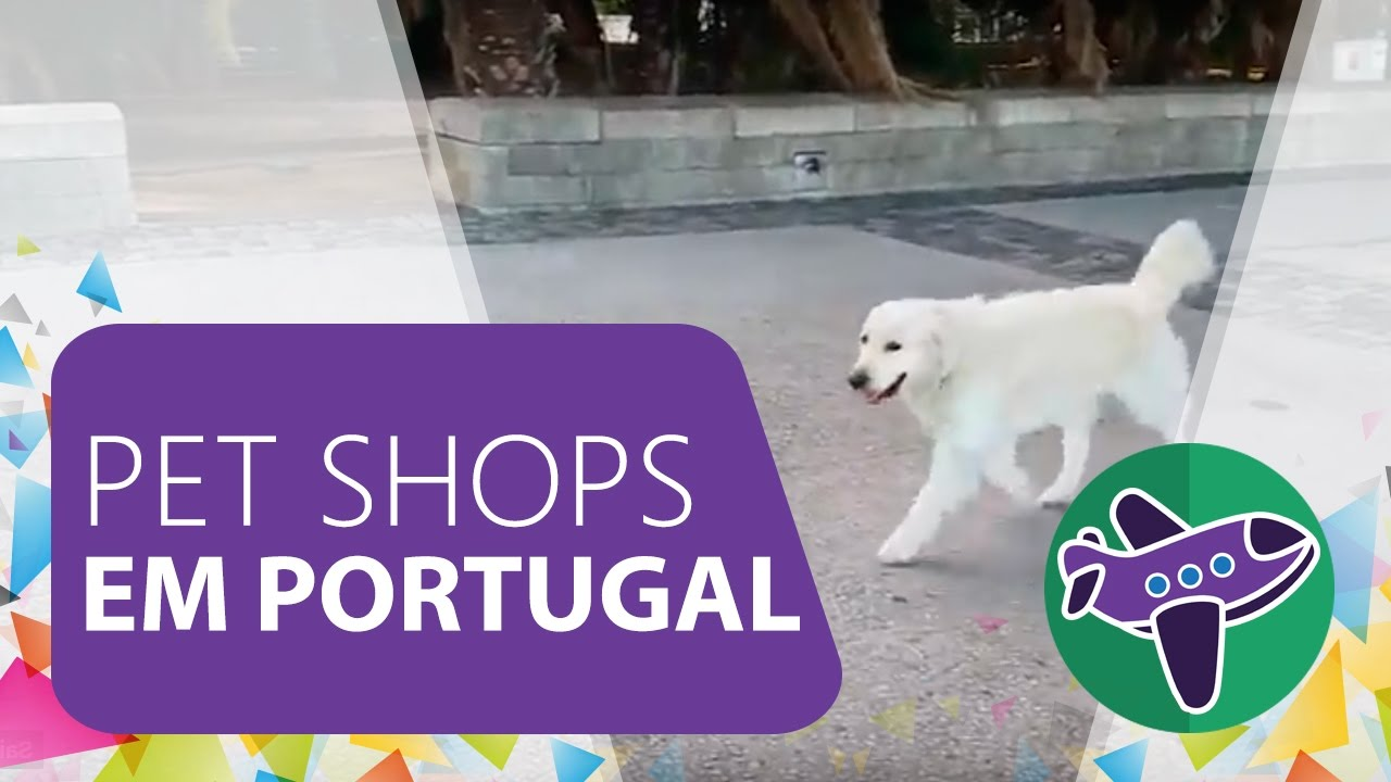 LUIZA VIAJA - Pet Shops em Portugal