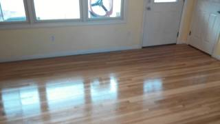 Hardwood Floor. Sanding 1st coat of polyurethane