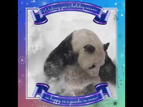 Happy Holidays and New Year from the Smithsonian's National Zoo