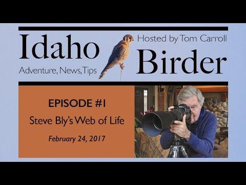 Idaho Birder, Episode #1: Steve Bly's Web Of Life (Pilot Episode)