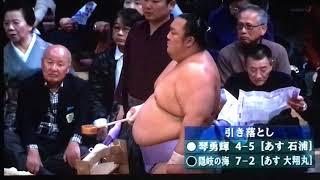 大相撲 #nhk_oozumou   #隠岐の海 #琴勇輝.