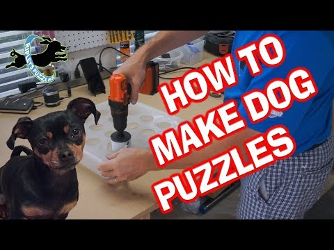 How To Make Dog Puzzles: Build Your Own DIY Homemade Ripley Games Tutorial
