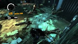 Batman: Arkham Asylum GOTY Edition (PC) - Extra: Totally Insane