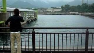 犬 室井さん 踊る 山本高広 織田裕二.
