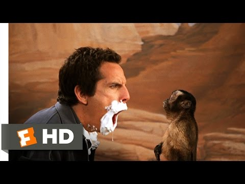 Night at the Museum 55 Movie   Slapping the Monkey 2006 HD