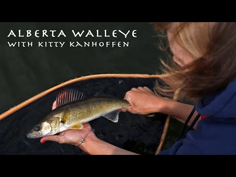 FLY FISHING FOR ALBERTA WALLEYE! With @Fishing With Rod And @Philip Rowley