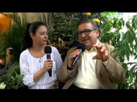 MERCADO DE SONORA, PLANTAS MEDICINALESPGM 126 B4