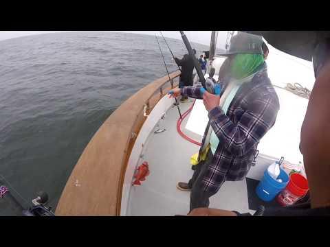 Santa Barbara Sportfishing! Reencuentro con Rebels Of The Sea en el bote Coral Sea