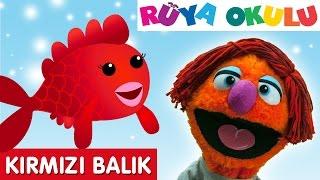 Kırmızı Balık  - Çocuk Şarkısı - Çizgi Film Şarkısı Türkçe - RÜYA OKULU