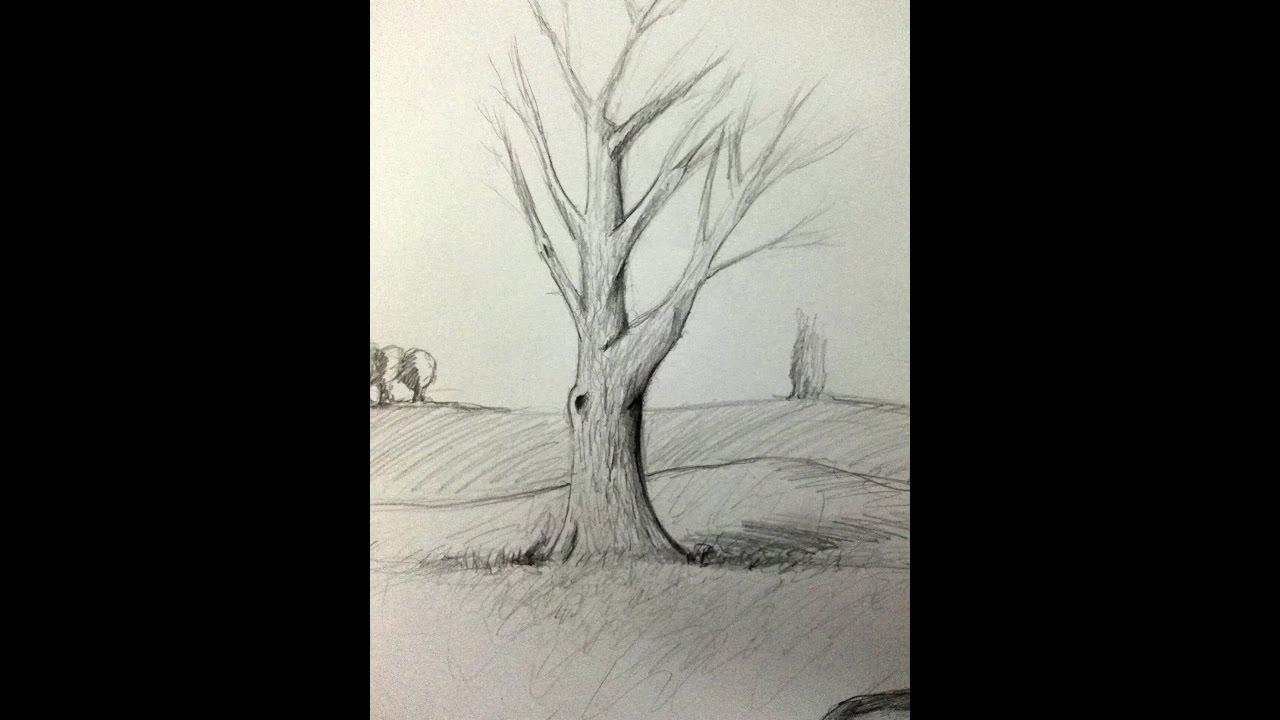 Kolay Ağaç çizimi Karakalem Tree Drawing Derwent Graphic Youtube