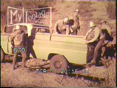 Stock Footage - 1950s FOREST SERVICE EMPLOYEES RESPOND TO FOREST FIRE