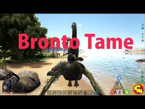 Ark Vanilla  Creative misfit Server  Kick it Old School    Prefect Tame Bronto