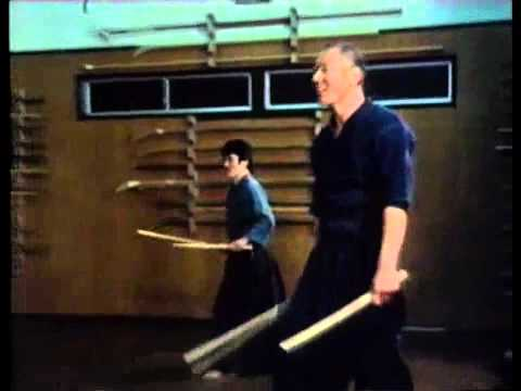 Two Swords Technique - Tenshinsho-den Katori Shinto ryu
