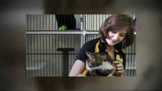 Total Pets - Top 10 Jobs Working with Pets & Animals