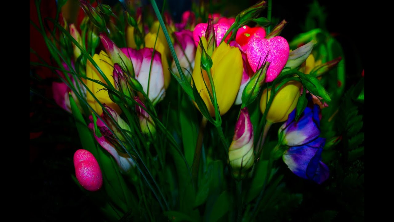 What flowers are suitable for each zodiac sign