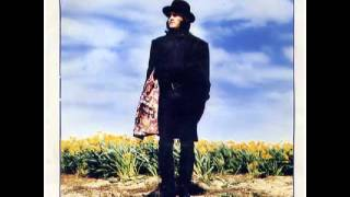 Zucchero - A Wonderful World
