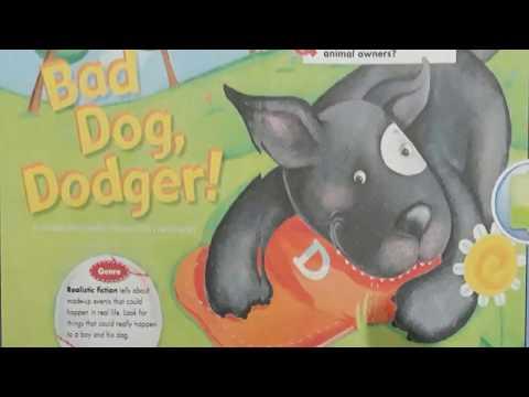Bad Dog, Dodger - Grade 2 - Reading Street - The Stepping Stone Kids