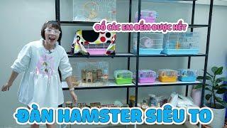 Gia Tài Hamster Của Chị Thơ Nguyễn