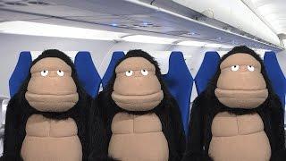 Airplane Etiquette