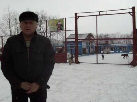 Обращение к Президенту РФ Медведеву Д А