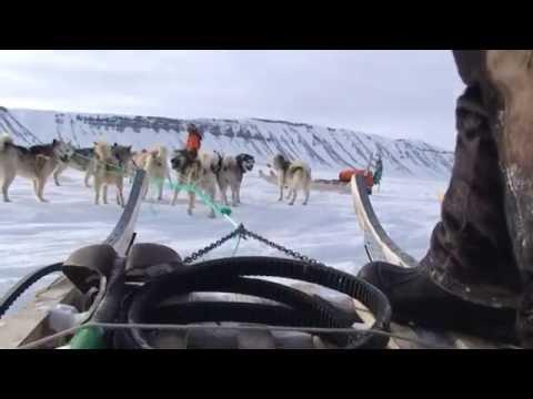Les derniers chasseurs de l'Arctique