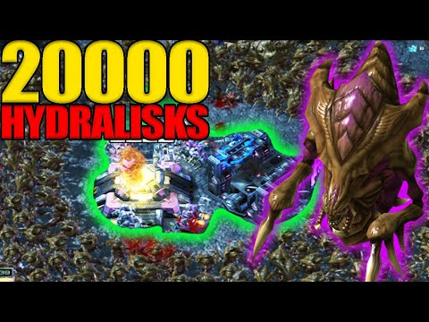 Can You Survive 20000 Hydralisks Attacking You