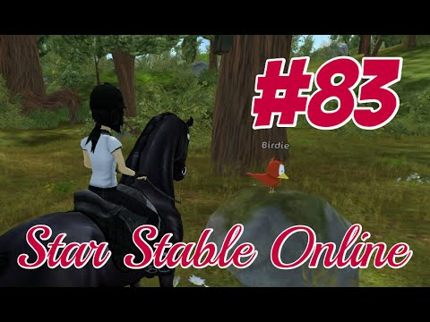 Let's Play; Star Stable Online #83 ~ Saving birds and trading with birds