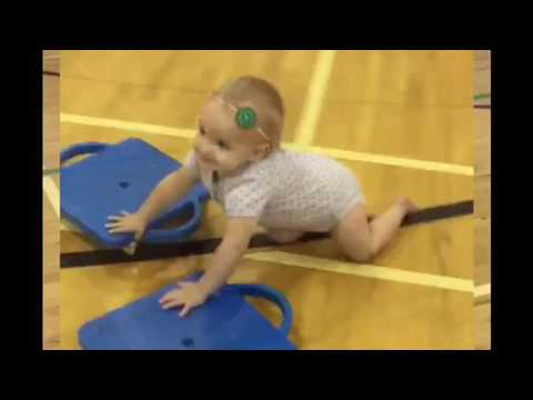 Clover Loves the Gym 2016