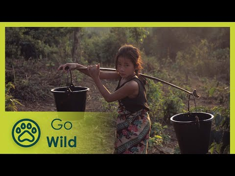 Laos Wonderland (full documentary) - The Secrets of Nature