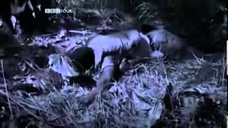 Documentary Why America Lost The Vietnam War Documentaries Full