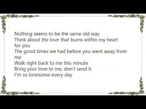 John Sebastian - Walk Right Back Lyrics