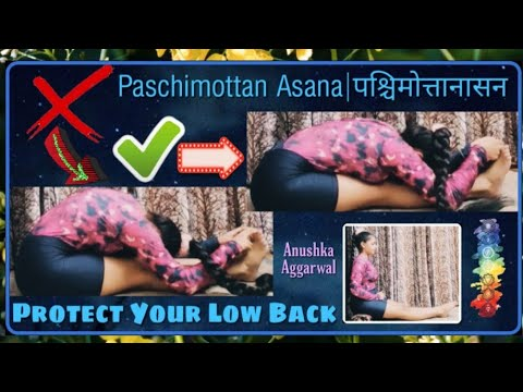 paschimottan asanaपश्चिमोत्तानासनhow to protect your low