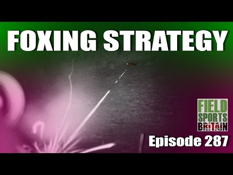 Fieldsports Britain - Foxshooting Strategy