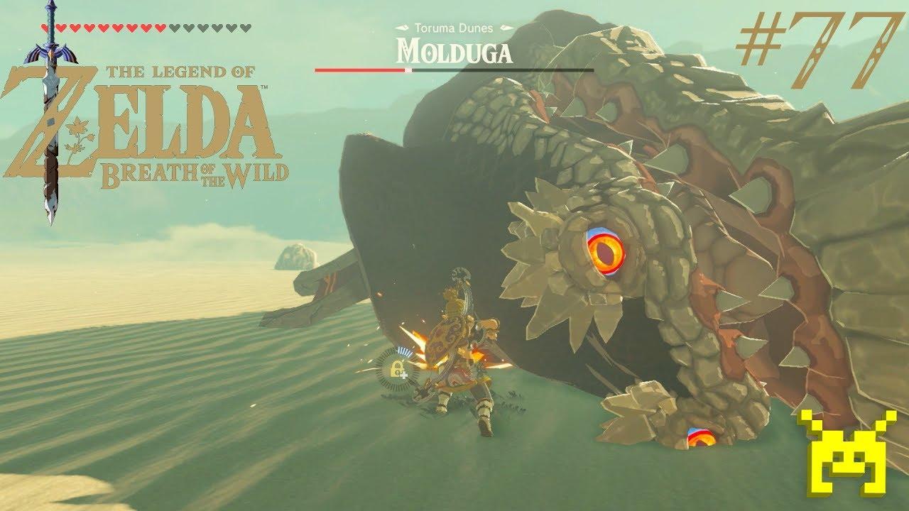 zelda how to kill a molduga