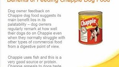 Chappie Dog Food Review