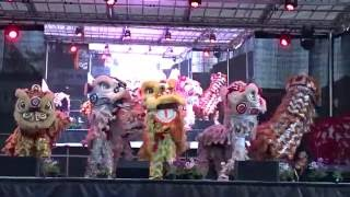 (múa sư tử ) Dong Thanh Lion Dance on Stage - Cabramatta Moon Cake Festival 4th Sept 2016 thumbnail