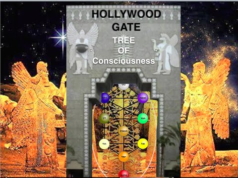 DAATH & DNA Kabalah TREE Of The Mind / Quantum Entanglement