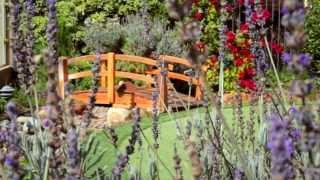 torrey hills home   10558 corte jardin carmel valley san diego 92130   luxury real estate del mar