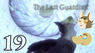 THE LAST GUARDIAN Ep.19
