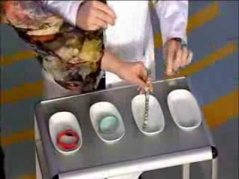 Мракоборцы. Магнитные браслеты