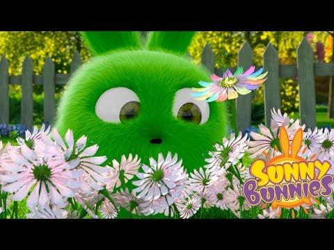 Cartoons for Children | Sunny Bunnies SUNNY BUNNIES FLOWER FIELD | Funny Cartoons For Children