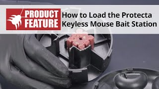 How to Load the Protecta Keyless Mouse Bait Station