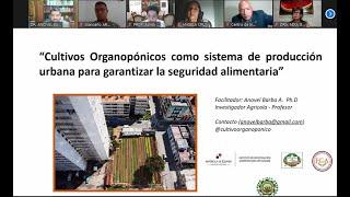 Webinar Cultivos Organopónicos como Sistema de Producción Urbana