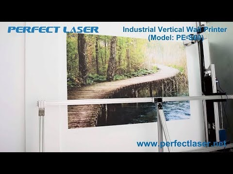 Perfect Laser Industrial Vertical Wall Printer Working Video PE S60