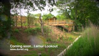 Coming soon - Lemur Lake at Durrell Wildlife Park