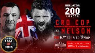 Bellator 200 - Mirko Filipovic vs Roy Nelson