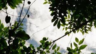 Coraz zimniej - Wyprawa po skarb Inków - Discovery Channel