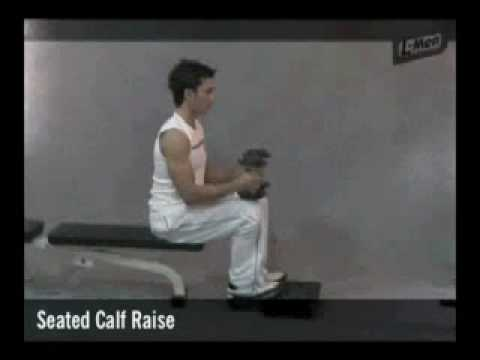 Gerakan Latihan Otot Betis - SEATED CALF RAISE